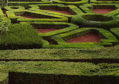palazzi-e-giardino-1-bagnaia